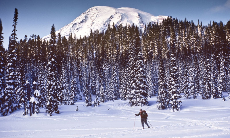 Cross Country Skiing near Mount Rainier