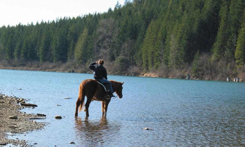 Horseback Riding in Washington